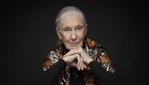 Iconic Environmental Activist Jane Goodall to Speak at the Tobin Center in 2020