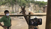San Antonio Zoo Offering Virtual Opportunities to Meet Animals Close Up