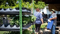 San Antonio Shows the Love to South Side Plant Seller After Viral Post on Social Media