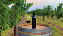 Six of 2020's top 50 wine counties are in the Lone Star State, according to study
