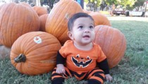 Check Out Urban Pumpkin Patches with Centro San Antonio and the Pearl Farmers Market