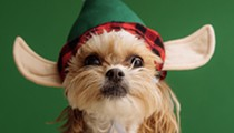 San Antonio Botanical Garden invites local pups to participate in its festive Deck the Paws Parade