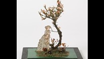 New exhibition at McNay Art Museum showcases recreations of nature for the stage