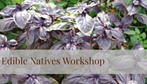 Edible Natives Workshop