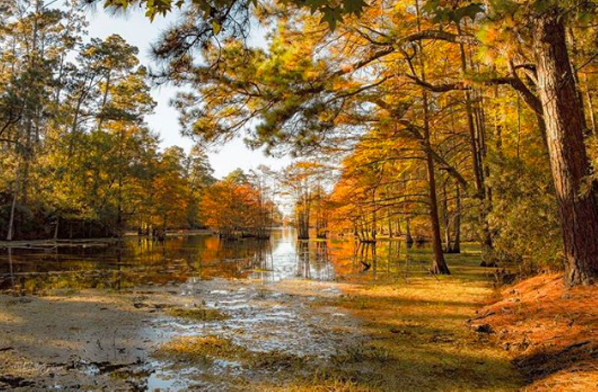 24 Beautiful Texas Parks Where You Can See Fall Colors