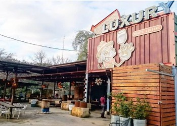 Exploring San Antonio's Pet-friendly Eateries, Parks and Patios