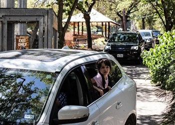 San Antonio Zoo Brings Back Its Popular Drive-Through Safaris