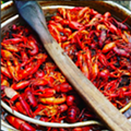 Celebrate Memorial Day with a Cajun Crawfish Boil and Pig Roast
