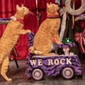 Josephine Theatre Offering Feline Fun with Return of the Amazing Acro-Cats