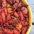 More Crawfish on the Way: Boils Start This Weekend at Shuck Shack