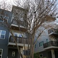 San Antonio City Council Approves Zoning Rules to Help Preserve Neighborhood Character