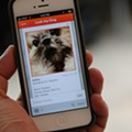 Animal Care Services Incorporates Facial Recognition Technology
