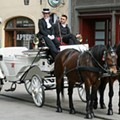 Get a Real Job, San Antonio: Be a Horse-Drawn Carriage Driver