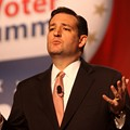 Ted Cruz Says Police Should Patrol and Secure Muslim Neighborhoods