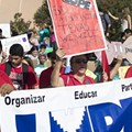 Newest Immigration Law Could Cost Texas $13 Billion, Report Finds