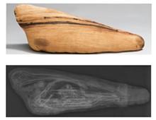animal_mummies_copy.jpg