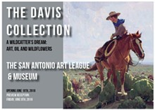 the_davis_collection_2.jpg