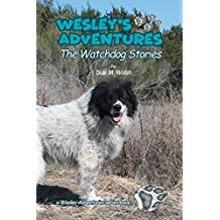 wesley_s_adventures.jpg