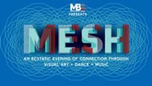 mesh_at_gallery.jpg