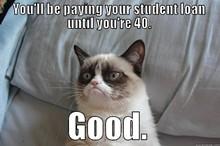 b117d179_grumpy_cat_-_paying_till_40.jpg
