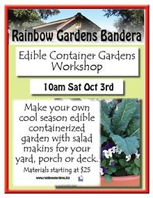 20aa0b3b_edible_container_gardens_bandera_1.jpg