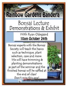 46724b80_bonsai_seminar_bandera.jpg