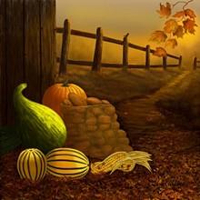 51377983_fall-harvest-ahoriginal.jpg