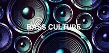 bcfe307b_bass_culture.jpg