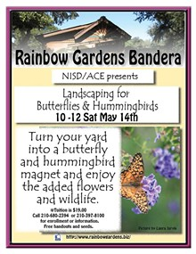 3bfaa7d0_landscaping_for_butterflies_and_hummingbirds_bandera.jpg