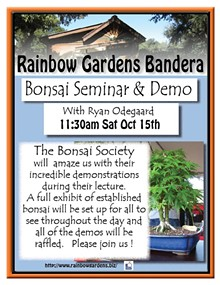 9be9fac0_bonsai_society_bandera_2016.jpg