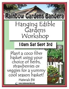 054294cb_hanging_edible_gardens_bandera.jpg