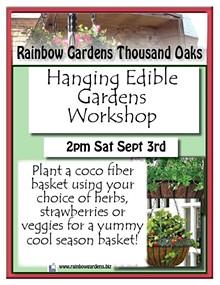 641e4f92_hanging_edible_gardens_thousand_oaks.jpg