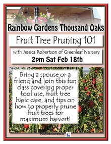 9fd5c14b_fruit_tree_pruning_thousand_oaks.jpg