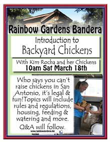 f98b251a_backyard_chickens_bandera2017.jpg