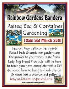 e72cc1ce_lady_bug_raised_beds_and_container_gardensbandera_2017.jpg