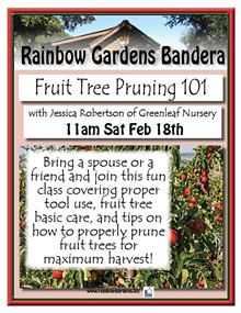 0ef9ed1b_fruit_tree_pruning_bandera.jpg