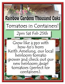 c94eb170_tomatoes_in_containers_thousand_oaks.jpg