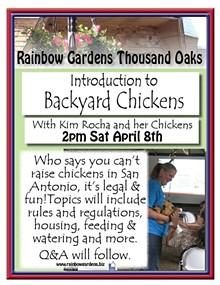 c3d98584_backyard_chickens_thousand_oaks_2017.jpg