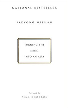 Turning the Mind into and Ally - Uploaded by Paul