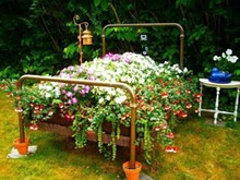76ce0a77_garden_bed.jpg