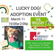 042f36fa_lucky_dog_adoption_event.jpg