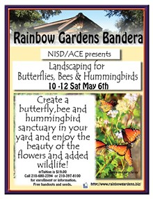 efab7e06_nisd_landscaping_for_butterflies_and_hummingbirds_bandera1.jpg
