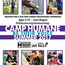9d4b6330_summer-camp-2017-flyer-sq.jpg
