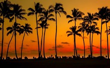 614bfae0_hawaii.jpg