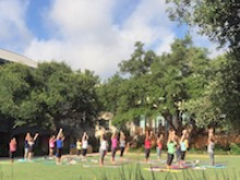 a6cc1281_yoga_on_the_lawn_copy.jpg