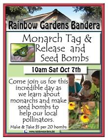 1c897905_monarch_tag_and_seed_bombs_bandera.jpg