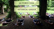 4bbc42ec_garden_and_yoga.jpg