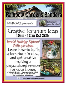 3c4cf6cc_nisdterrariums_bandera_april_2017_holiday.jpg