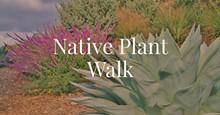 dcb39ca1_native_plant_walk.jpg