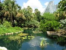 botanical_garden_pic.jpg